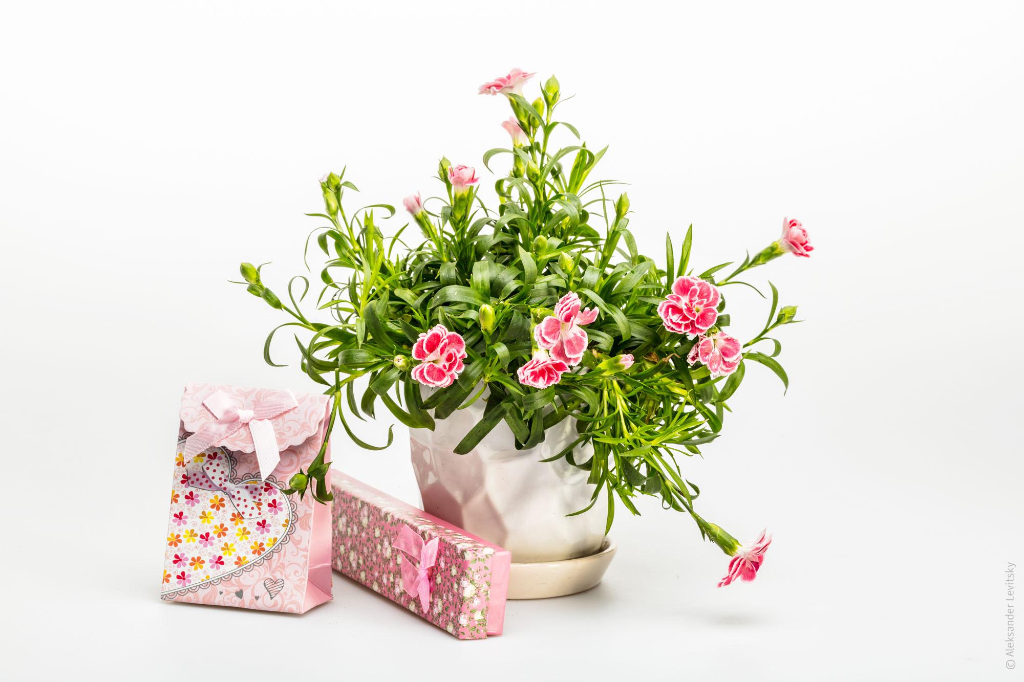 Фотография предметов ко дню Святого Валентина