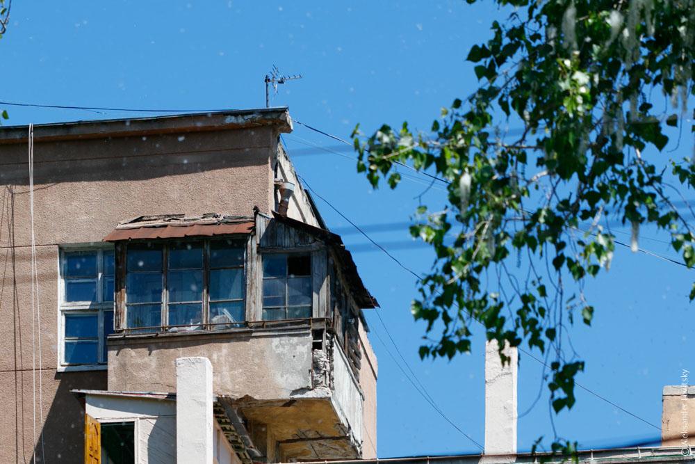 Тополинный пух на Маразлиевской в Одессе