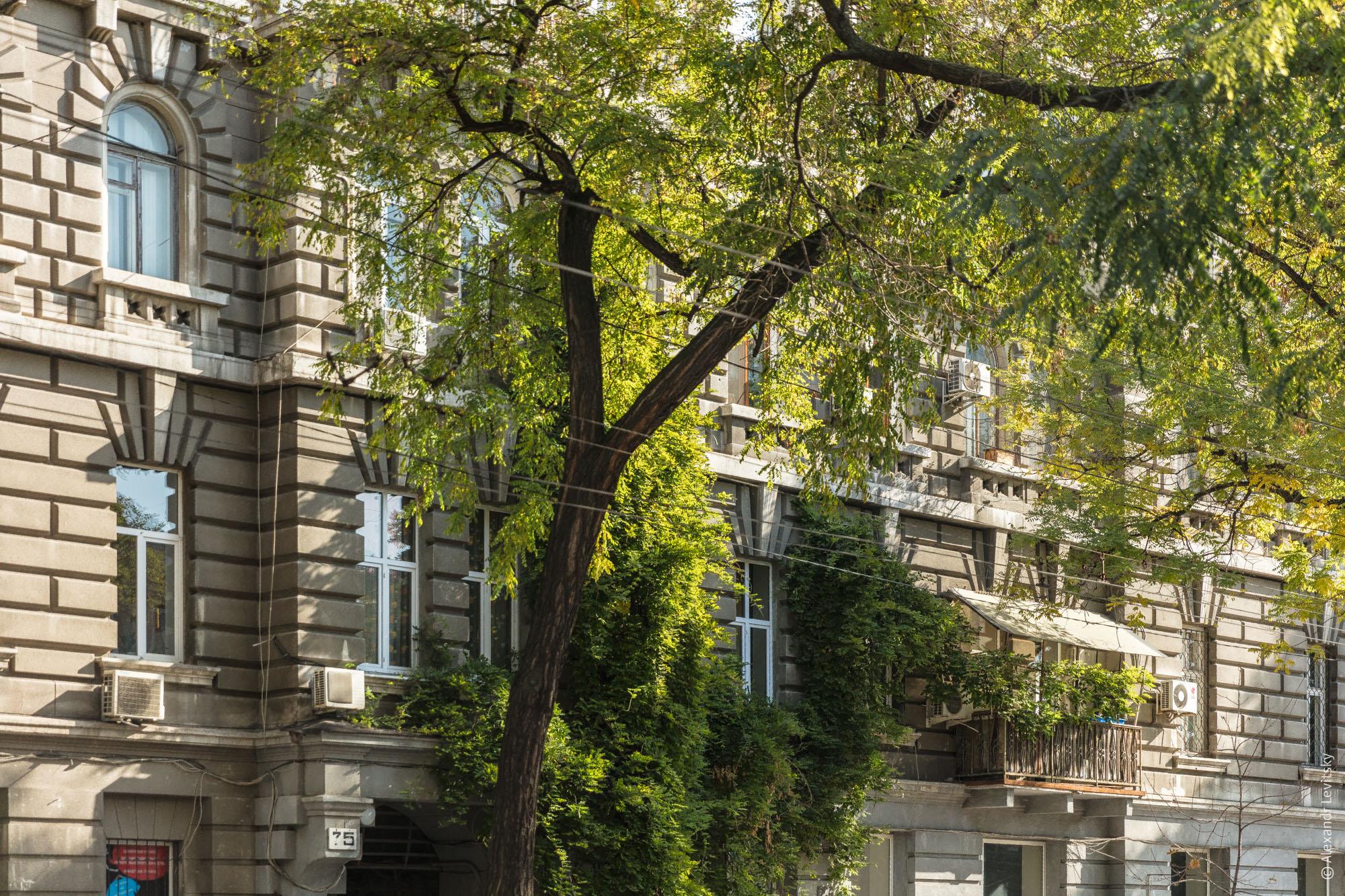 Архитектура Одессы осенью